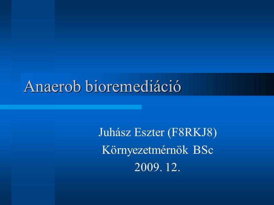 Anaerob bioremediáció