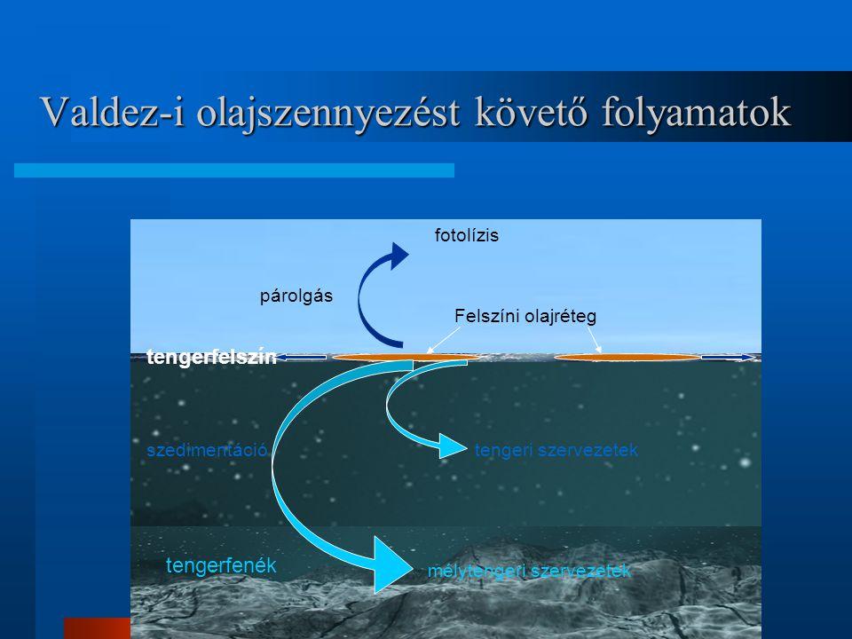 Valdez-i olajszennyezést követő folyamatok