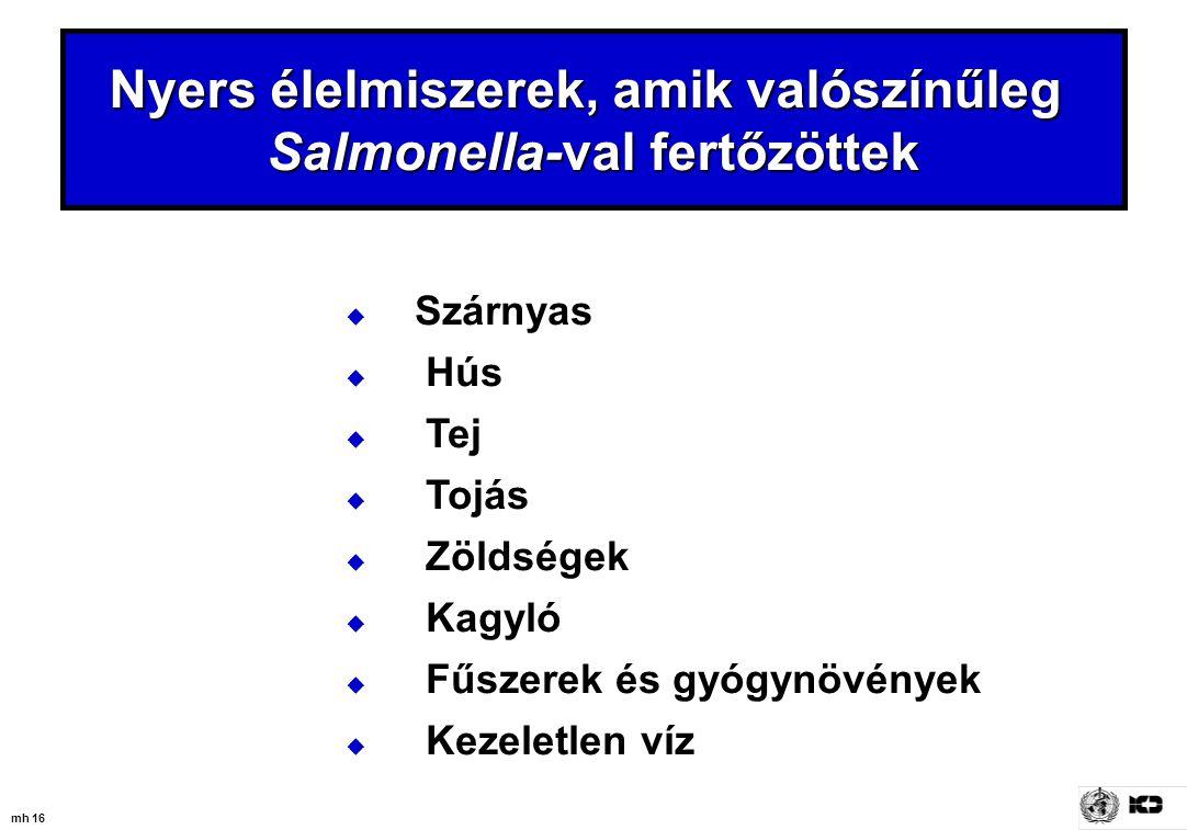 Nyers élelmiszerek, amik valószínűleg Salmonella-val fertőzöttek