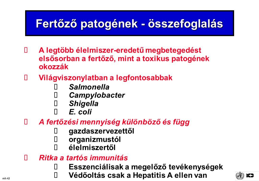 Fertőző patogének - összefoglalás