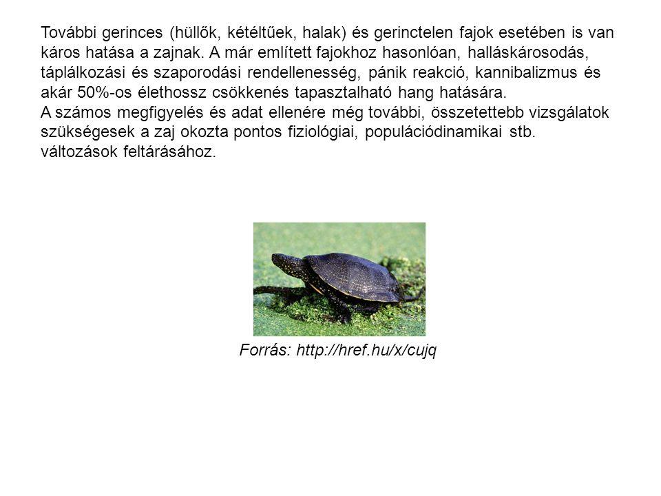 További gerinces (hüllők, kétéltűek, halak) és gerinctelen fajok esetében is van