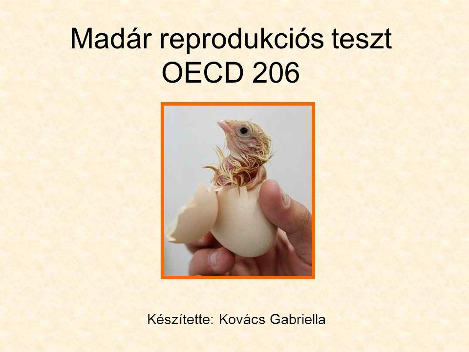 Madár reprodukciós teszt OECD 206