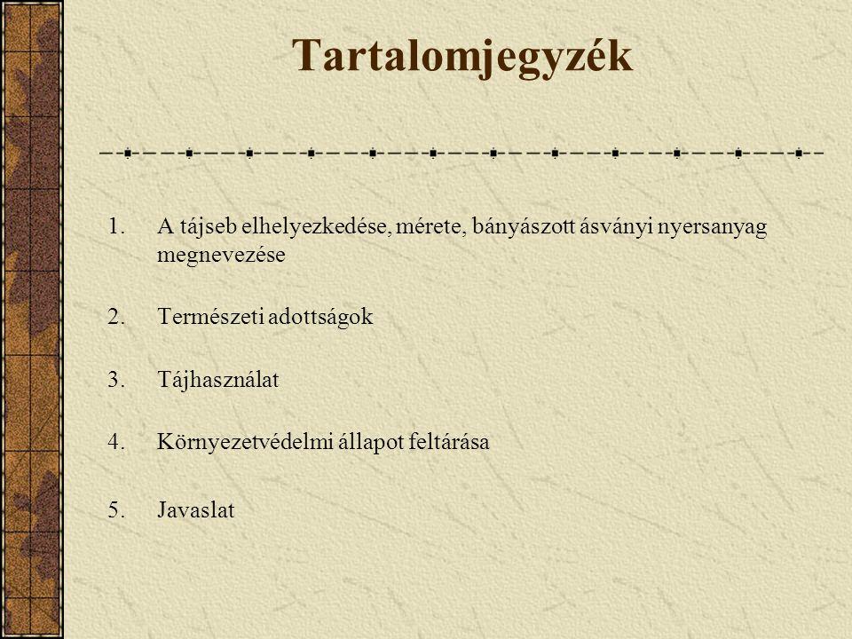 Tartalomjegyzék A tájseb elhelyezkedése, mérete, bányászott ásványi nyersanyag megnevezése. Természeti adottságok.