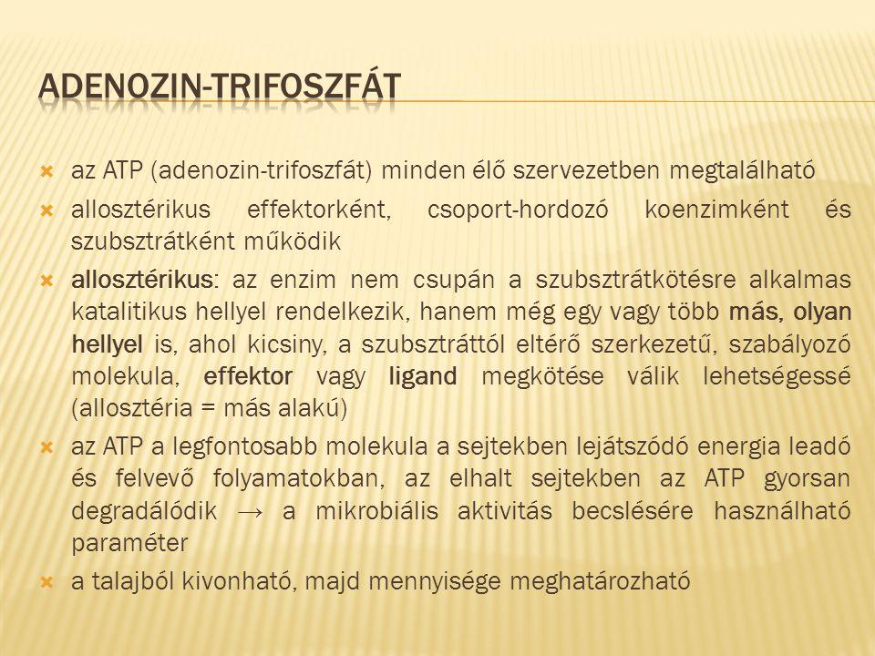 adenozin-trifoszfát az ATP (adenozin-trifoszfát) minden élő szervezetben megtalálható.