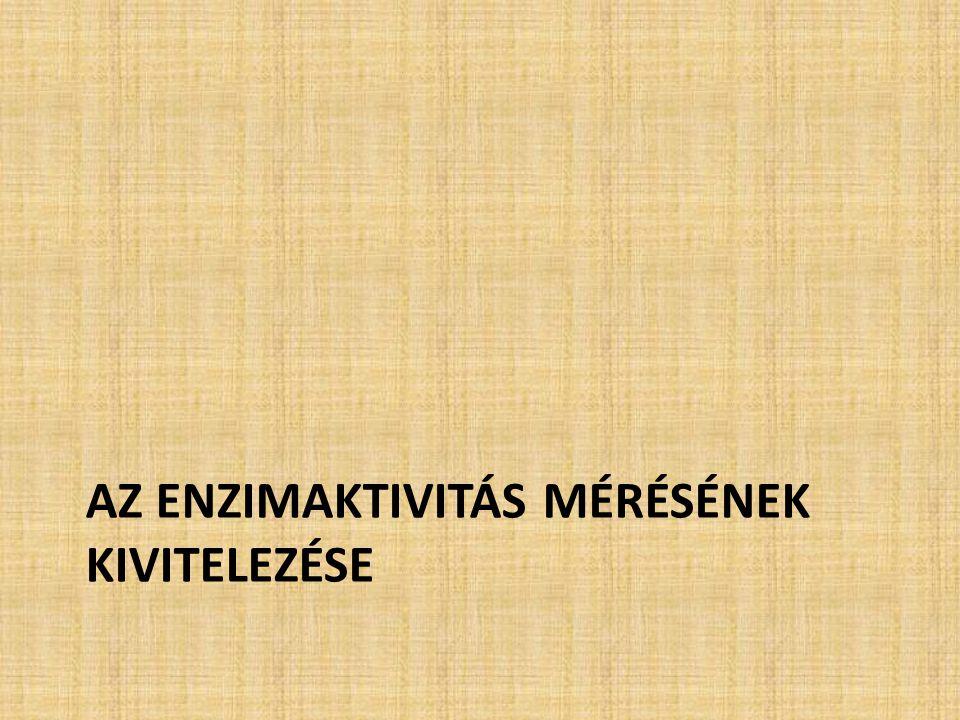 Az enzimaktivitás mérésének kivitelezése