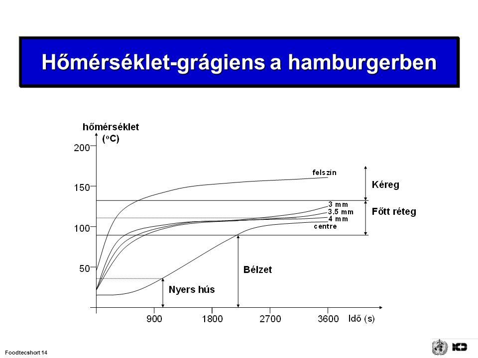 Hőmérséklet-grágiens a hamburgerben
