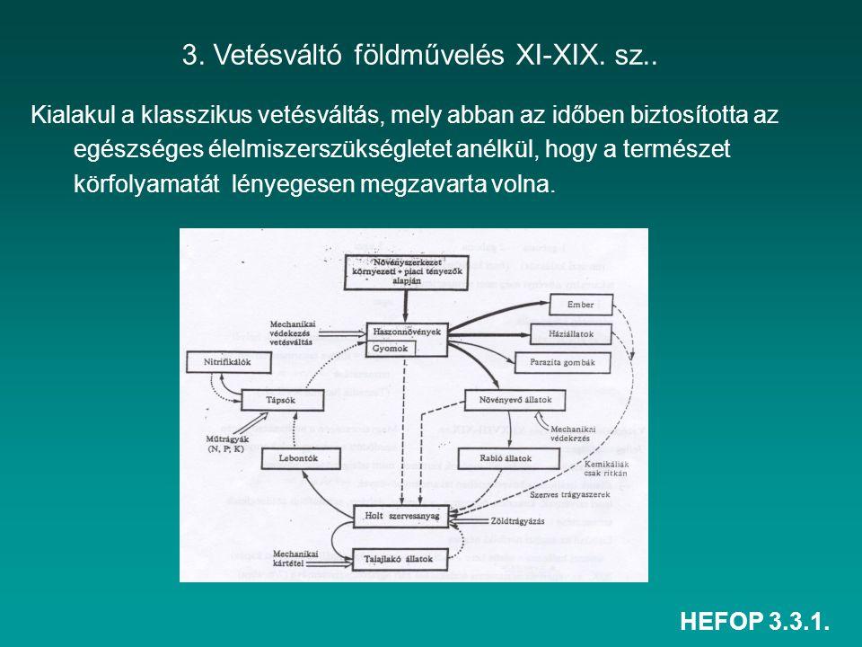 3. Vetésváltó földművelés XI-XIX. sz..
