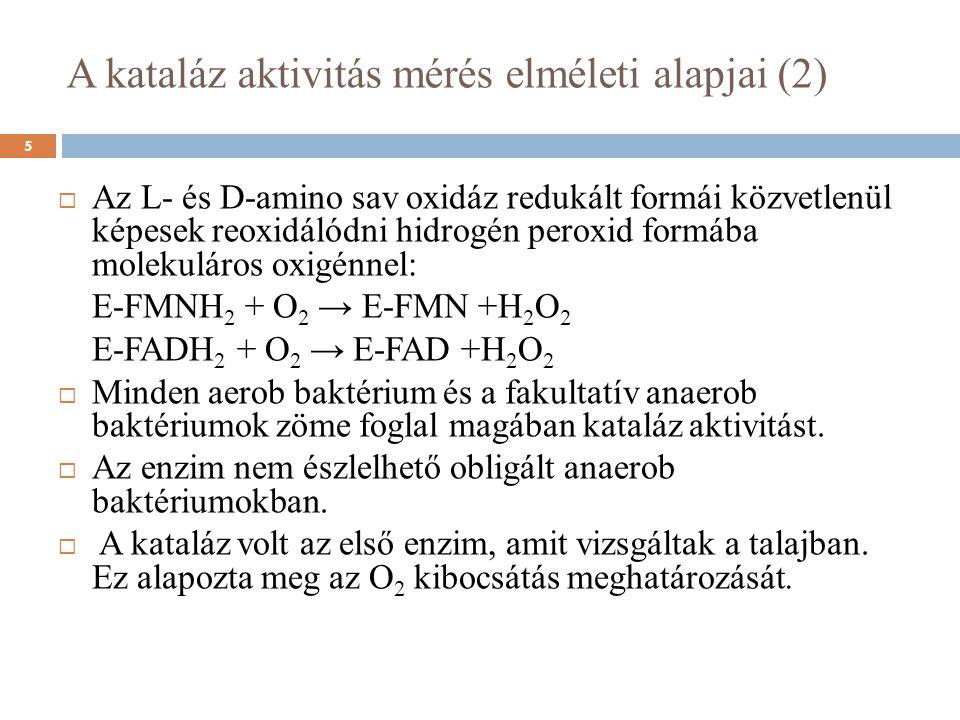 A kataláz aktivitás mérés elméleti alapjai (2)