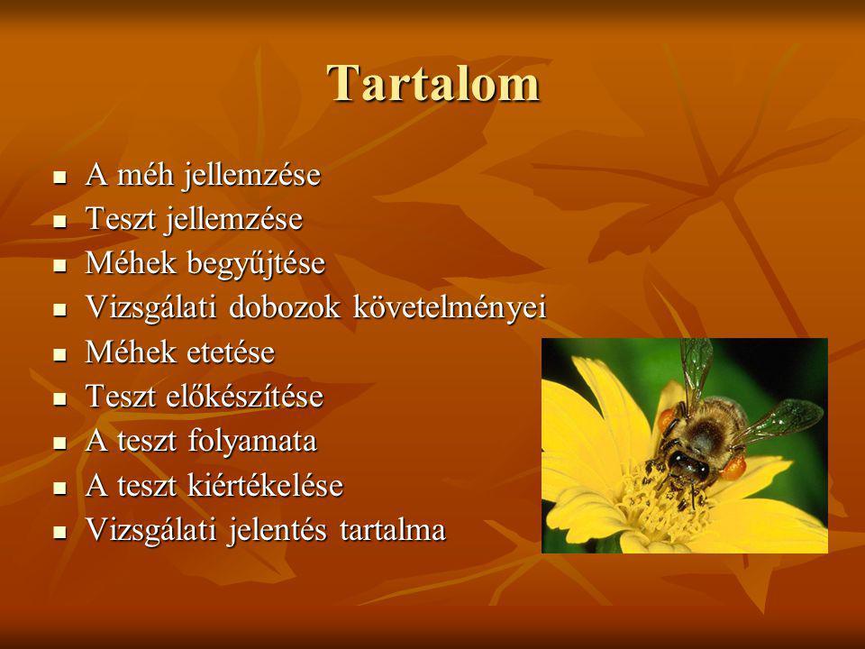Tartalom A méh jellemzése Teszt jellemzése Méhek begyűjtése