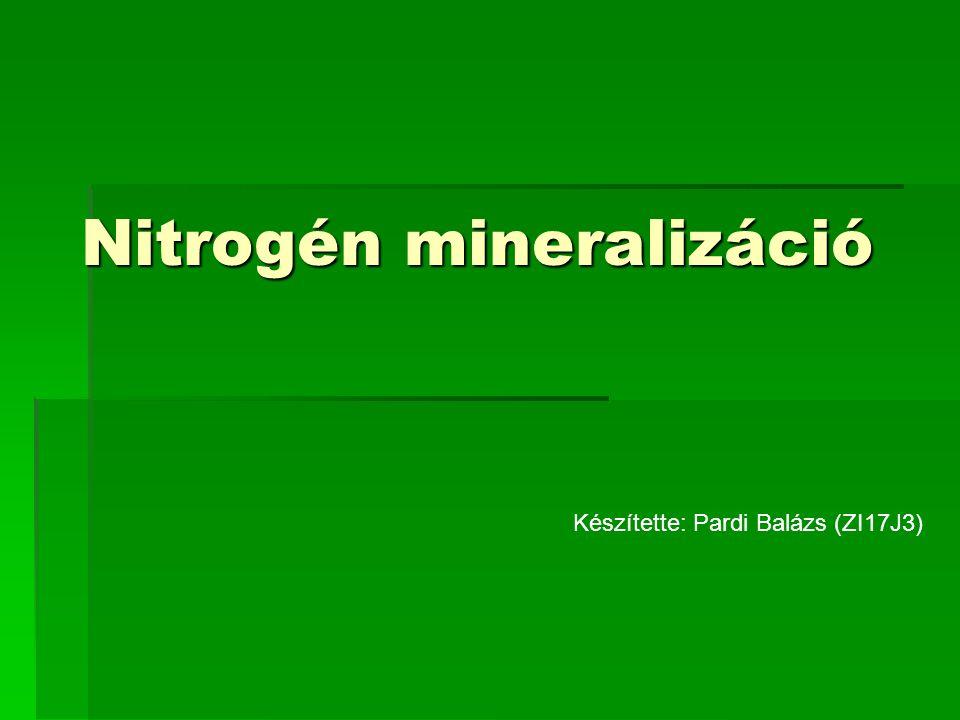 Nitrogén mineralizáció