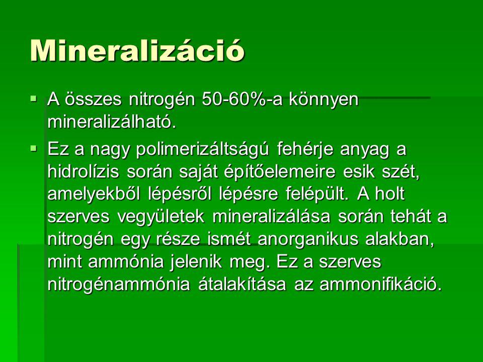 Mineralizáció A összes nitrogén 50-60%-a könnyen mineralizálható.