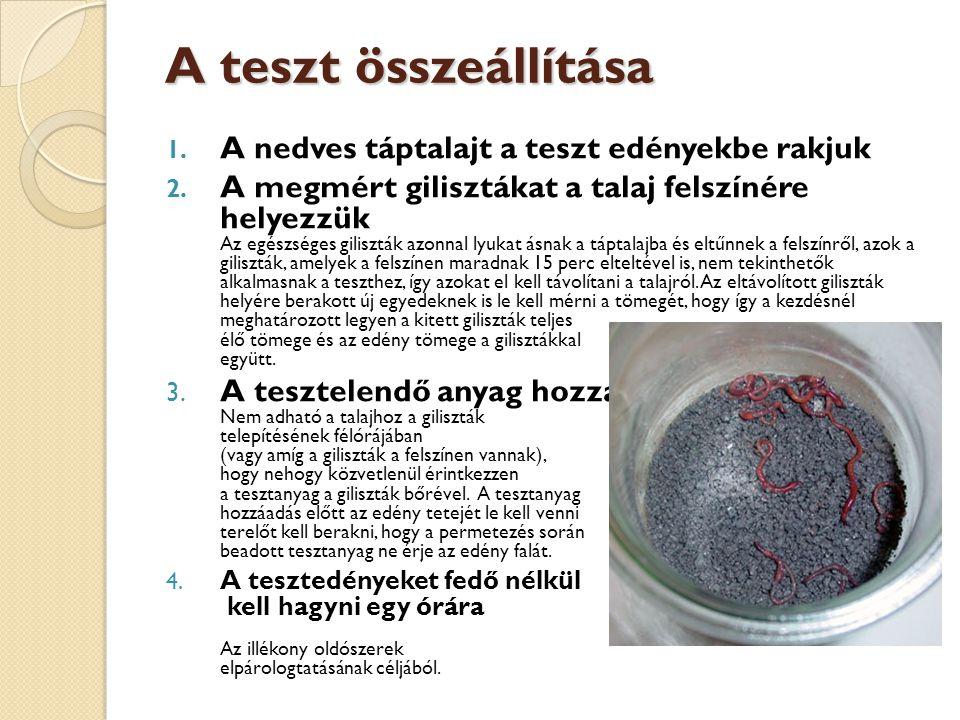 A teszt összeállítása A nedves táptalajt a teszt edényekbe rakjuk
