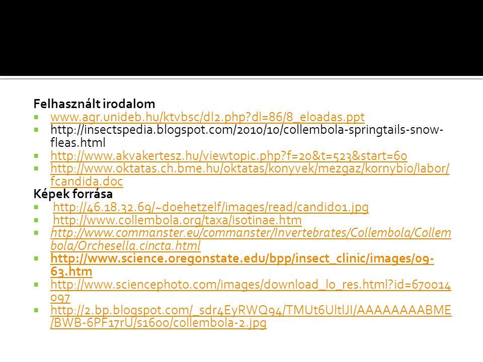 Felhasznált irodalom www.agr.unideb.hu/ktvbsc/dl2.php dl=86/8_eloadas.ppt.
