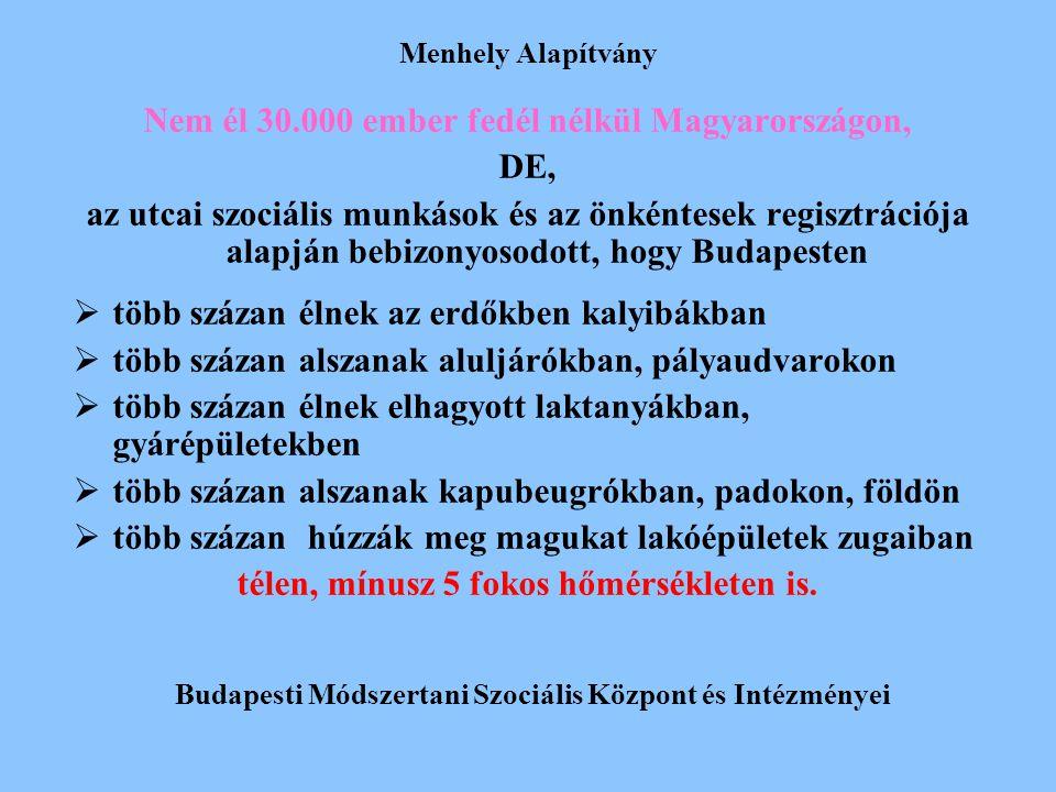Nem él 30.000 ember fedél nélkül Magyarországon, DE,