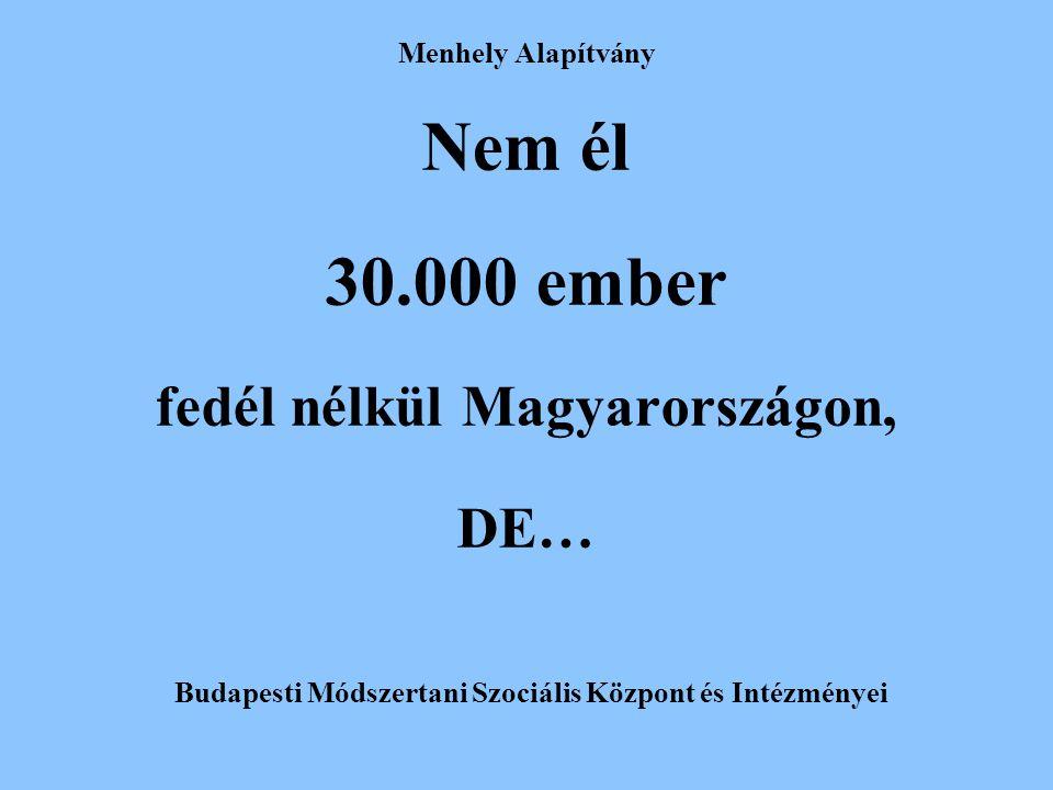 Nem él 30.000 ember fedél nélkül Magyarországon, DE…