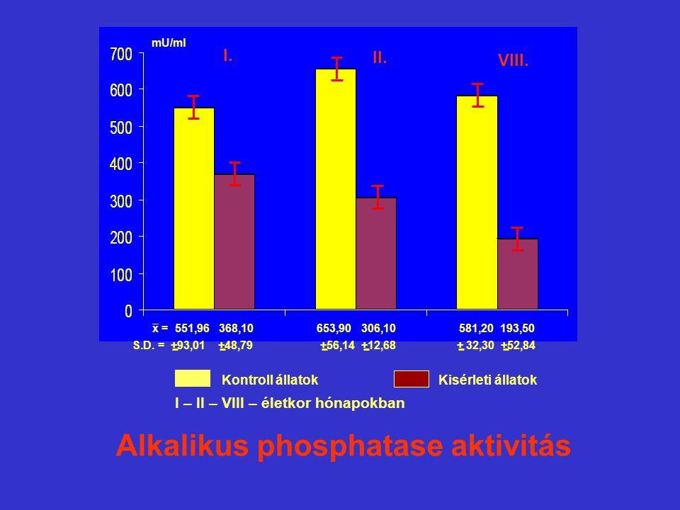 Alkalikus phosphatase aktivitás