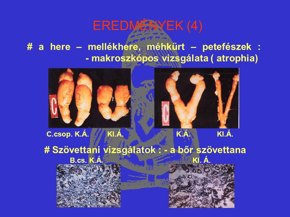 EREDMÉNYEK (4) # a here – mellékhere, méhkürt – petefészek : - makroszkópos vizsgálata ( atrophia)