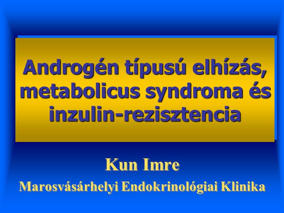 Androgén típusú elhízás, metabolicus syndroma és inzulin-rezisztencia