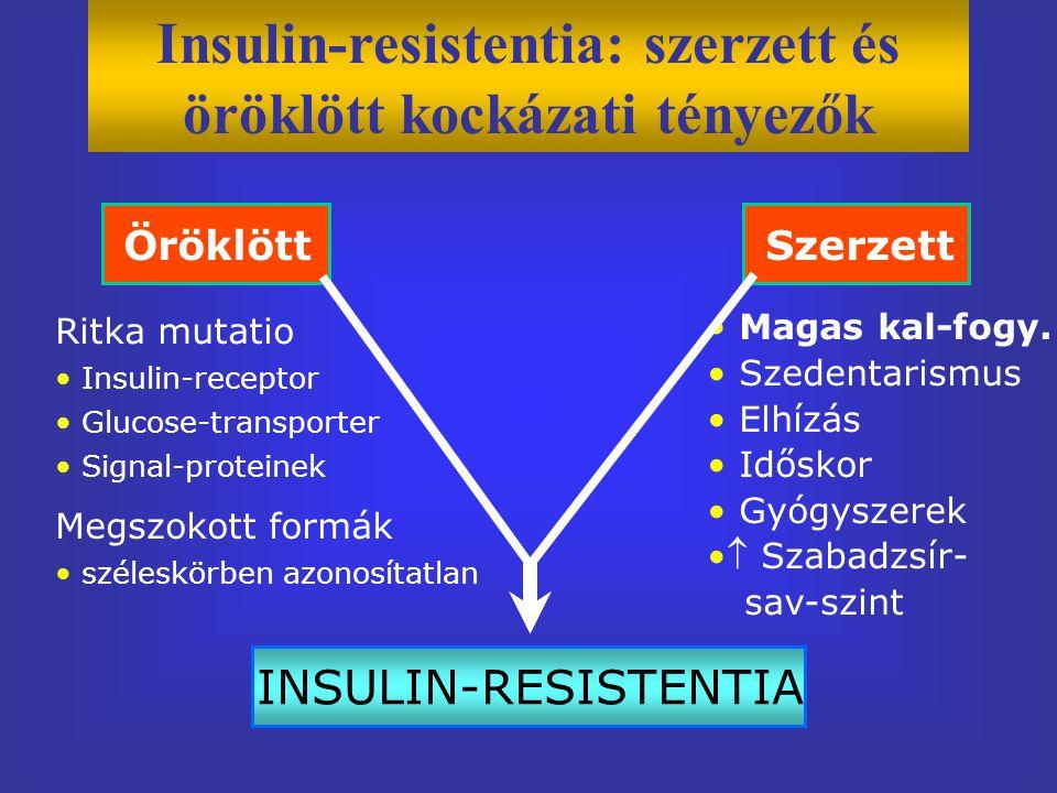Insulin-resistentia: szerzett és öröklött kockázati tényezők