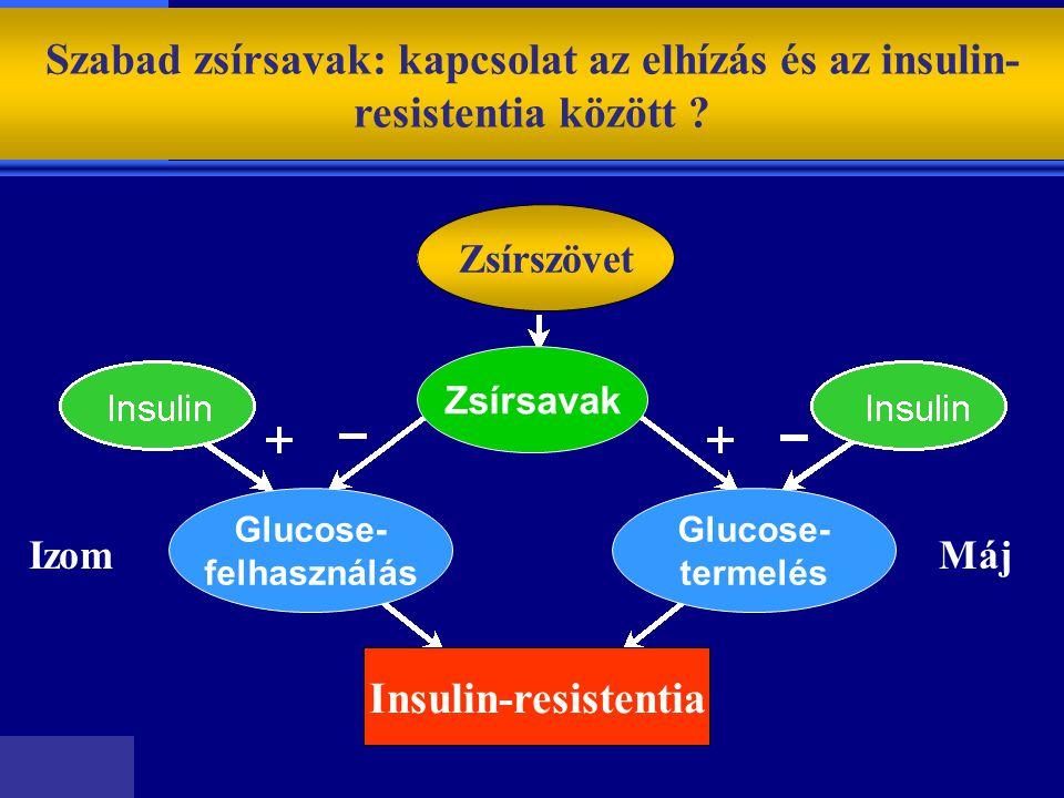 Szabad zsírsavak: kapcsolat az elhízás és az insulin-resistentia között
