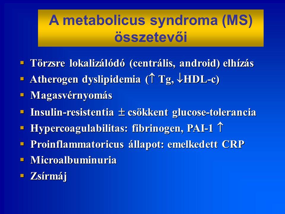 A metabolicus syndroma (MS) összetevői