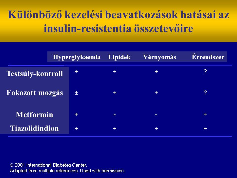 Különböző kezelési beavatkozások hatásai az insulin-resistentia összetevőire