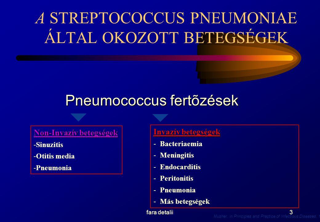 A STREPTOCOCCUS PNEUMONIAE ÁLTAL OKOZOTT BETEGSÉGEK