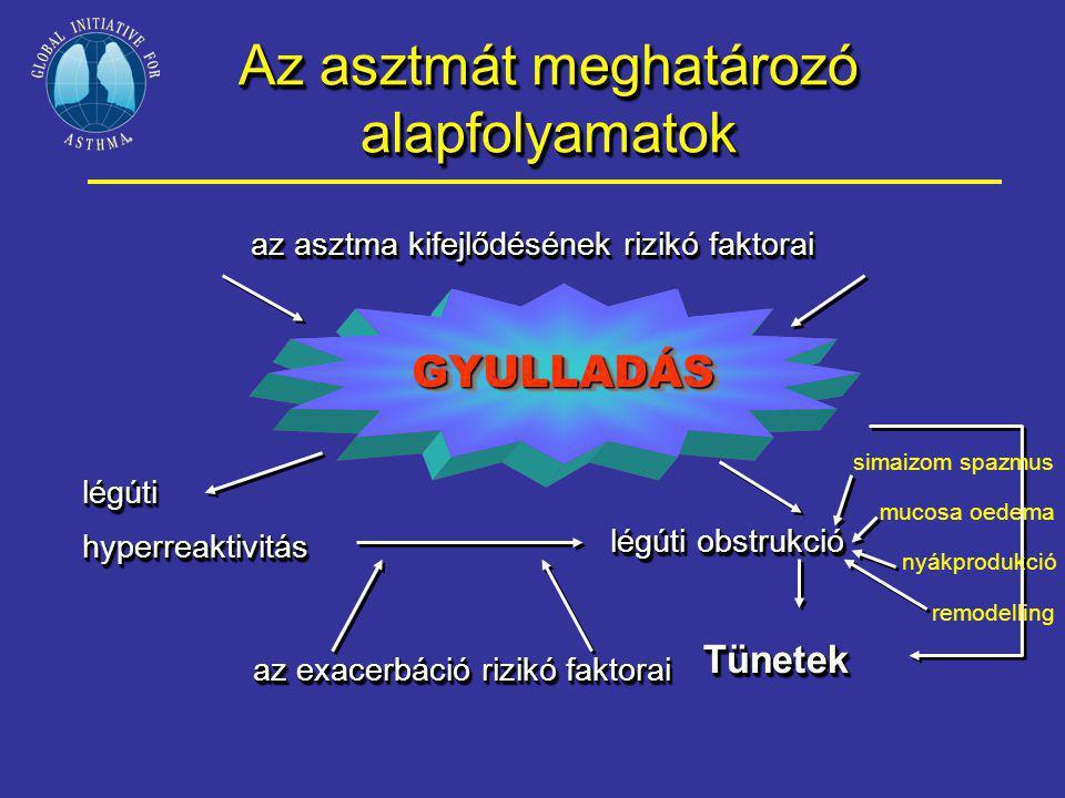 Az asztmát meghatározó alapfolyamatok