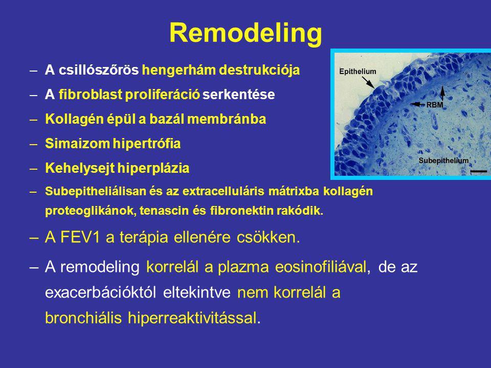 Remodeling A FEV1 a terápia ellenére csökken.