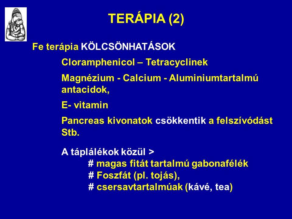TERÁPIA (2) Fe terápia KÖLCSÖNHATÁSOK Cloramphenicol – Tetracyclinek
