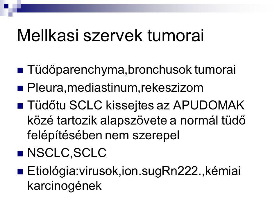 Mellkasi szervek tumorai