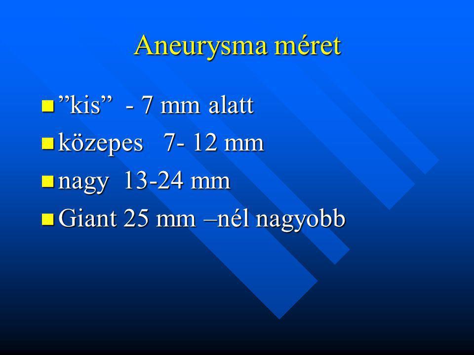 Aneurysma méret kis - 7 mm alatt közepes 7- 12 mm nagy 13-24 mm