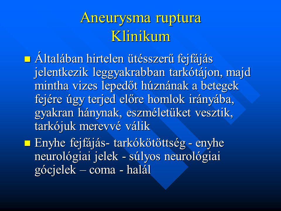 Aneurysma ruptura Klinikum