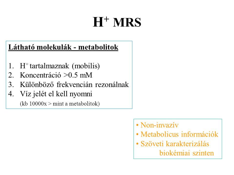 H+ MRS Látható molekulák - metabolitok H+ tartalmaznak (mobilis)