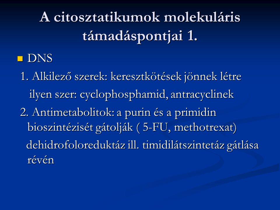 A citosztatikumok molekuláris támadáspontjai 1.