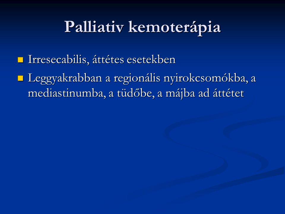 Palliativ kemoterápia