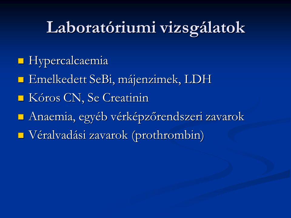 Laboratóriumi vizsgálatok