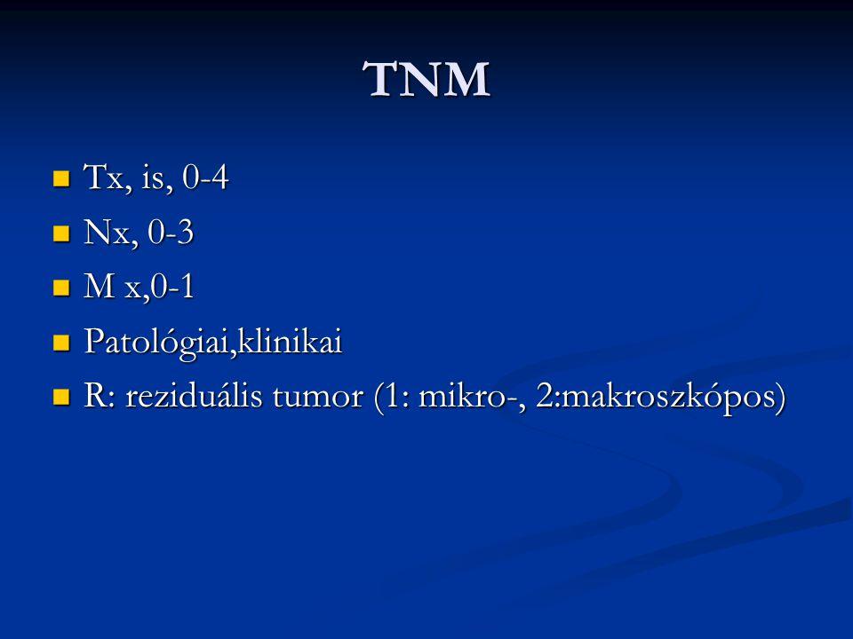 TNM Tx, is, 0-4 Nx, 0-3 M x,0-1 Patológiai,klinikai