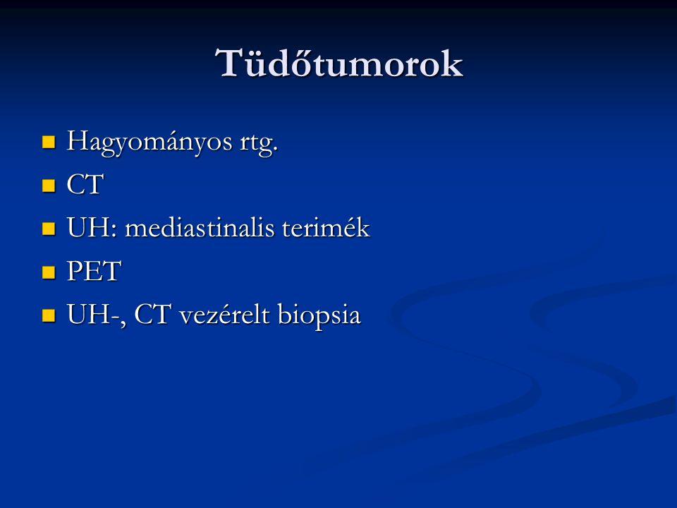 Tüdőtumorok Hagyományos rtg. CT UH: mediastinalis terimék PET