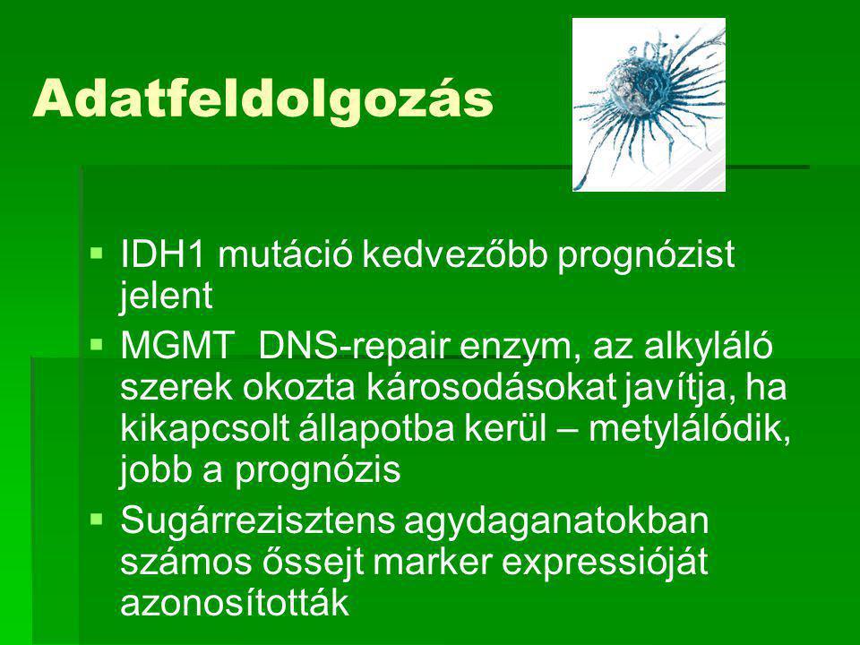 Adatfeldolgozás IDH1 mutáció kedvezőbb prognózist jelent