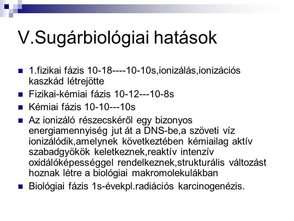 V.Sugárbiológiai hatások