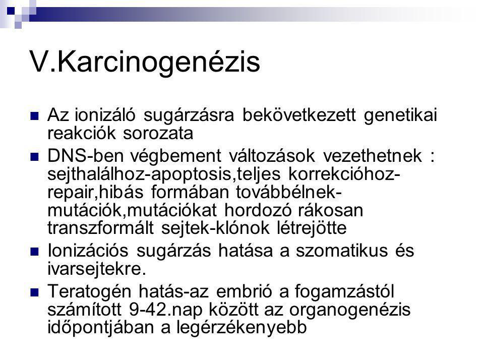 V.Karcinogenézis Az ionizáló sugárzásra bekövetkezett genetikai reakciók sorozata.