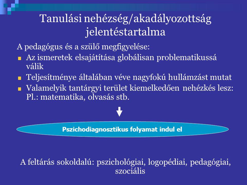 Tanulási nehézség/akadályozottság jelentéstartalma