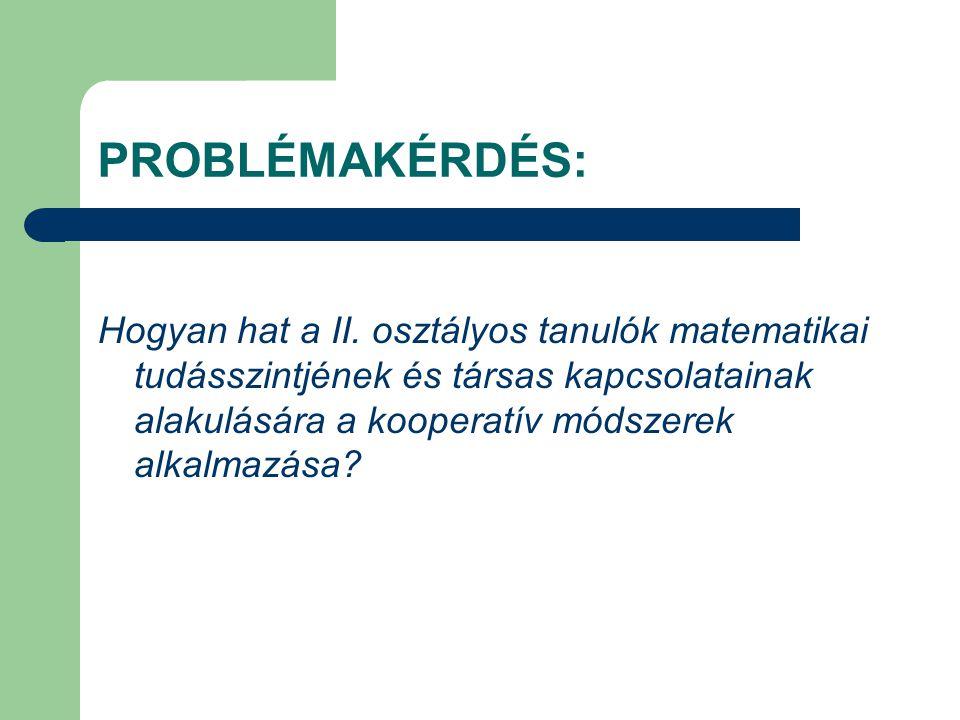 PROBLÉMAKÉRDÉS: