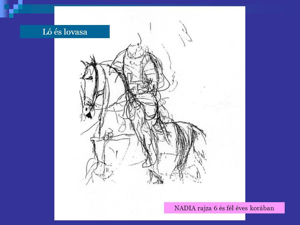 NADIA rajza 6 és fél éves korában