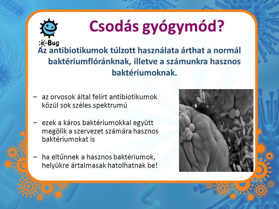 Csodás gyógymód Az antibiotikumok túlzott használata árthat a normál baktériumflóránknak, illetve a számunkra hasznos baktériumoknak.