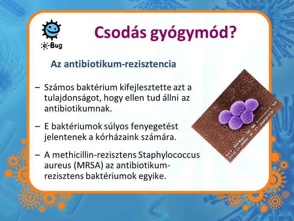 Az antibiotikum-rezisztencia