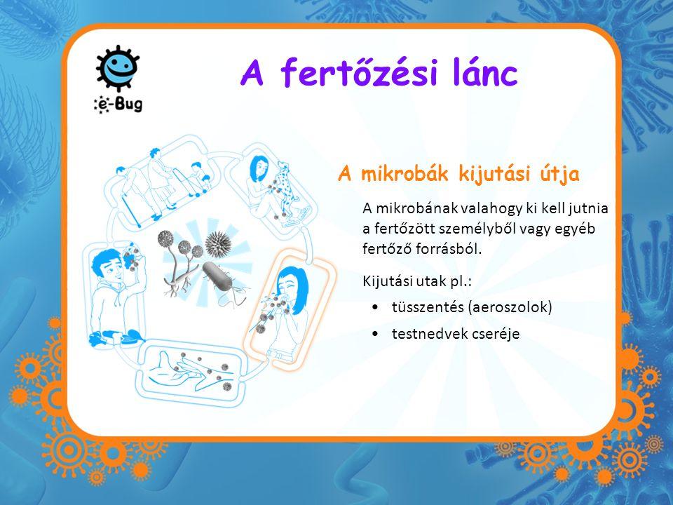 A fertőzési lánc A mikrobák kijutási útja