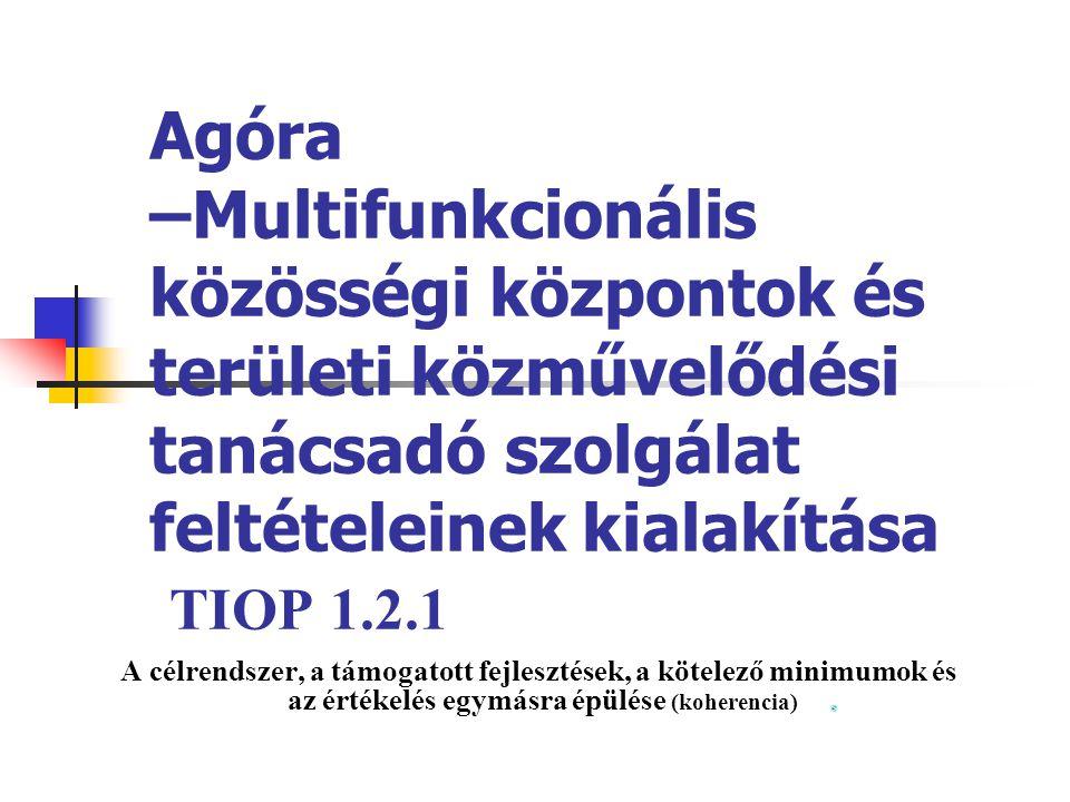 Agóra –Multifunkcionális közösségi központok és területi közművelődési tanácsadó szolgálat feltételeinek kialakítása TIOP 1.2.1