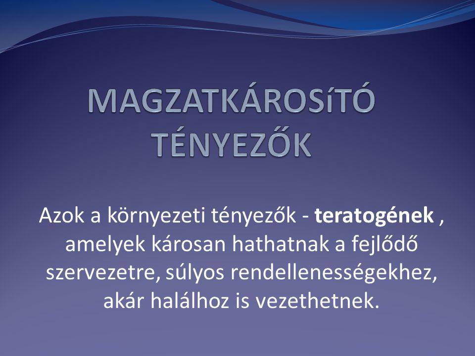 MAGZATKÁROSíTÓ TÉNYEZŐK